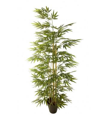 Bamboo artificiale modello Cara estremamente realistico.bamboo finto concoral altezza 180cm.